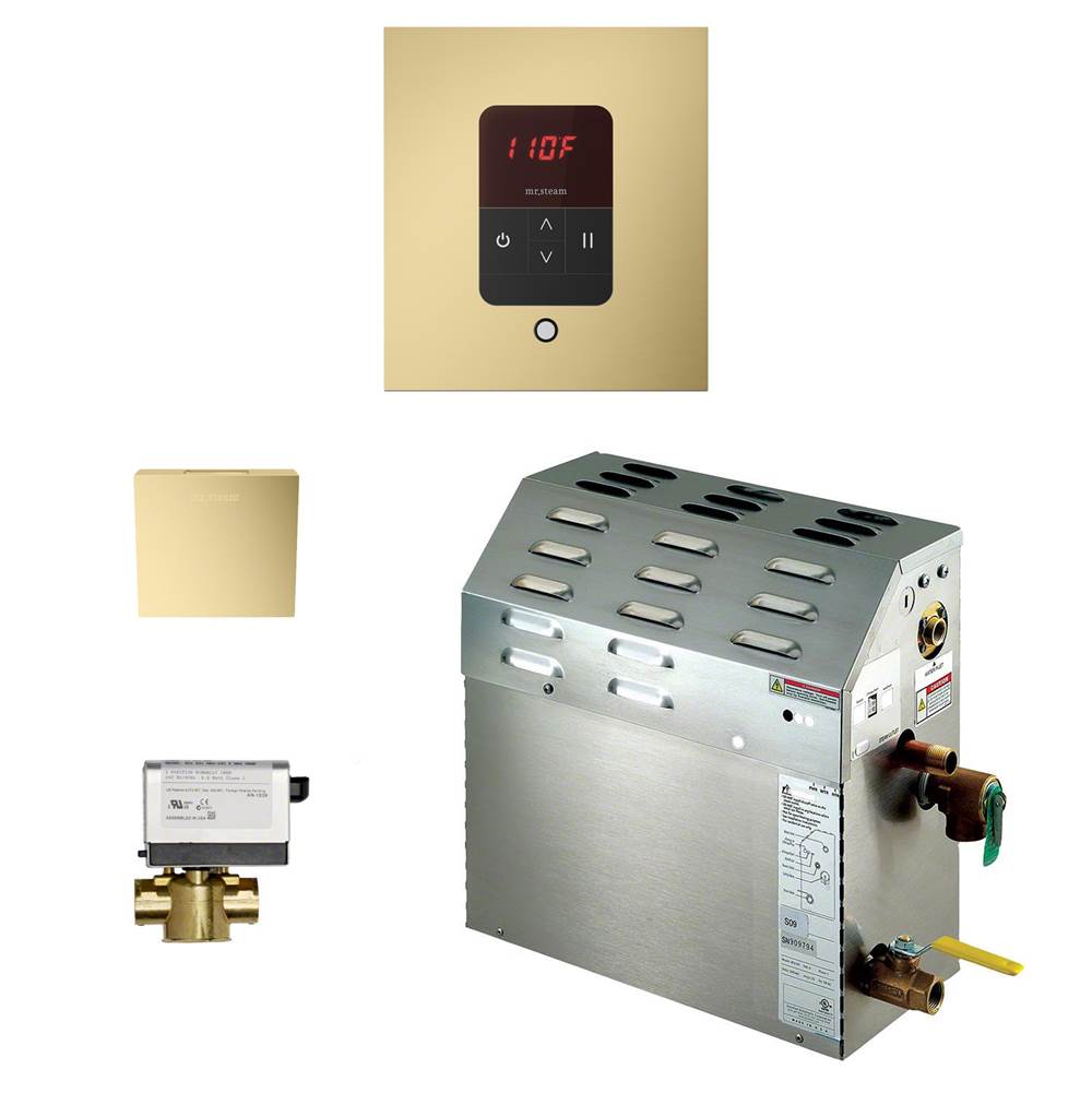 Mr. Steam 6kW Steam Bath Generator with iTempo AutoFlush Square Package in Satin Brass